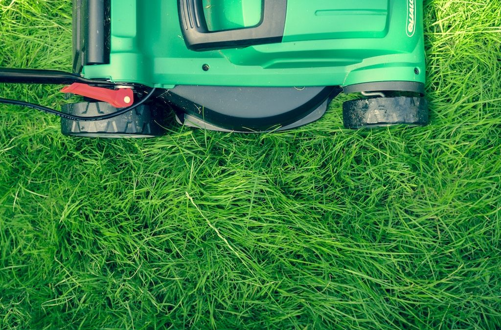 TruGreen Lawn Care on the Importance of Properly Looking after a Knoxville Lawn